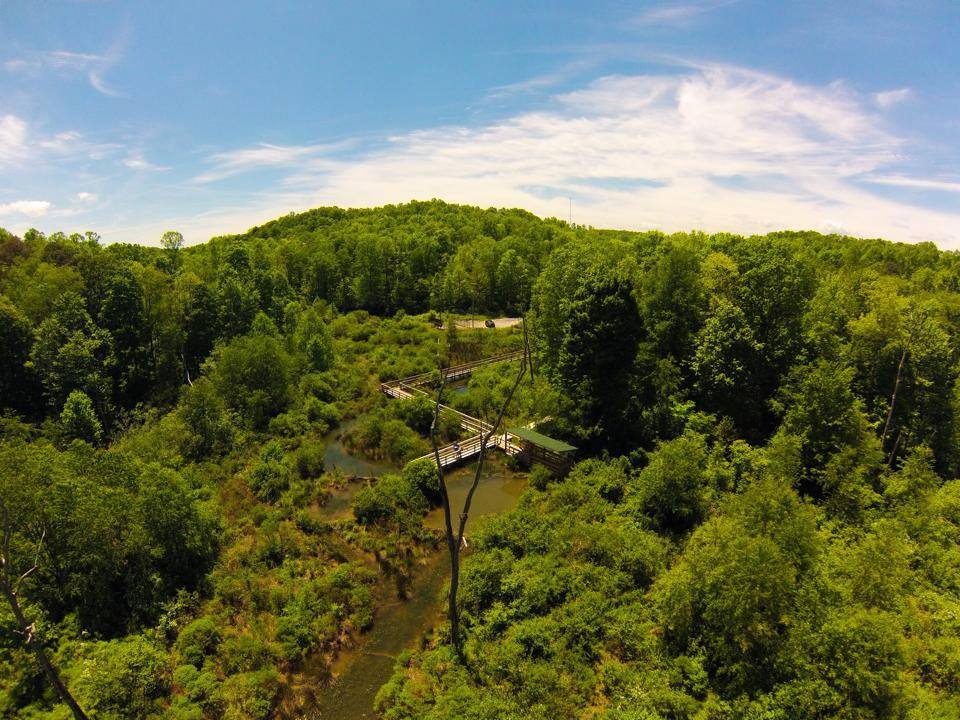 Image by Tim Naylor. Aerial view of the wetlands in the outdoor classroom of New River Birding & Nature Center. Wolf Creek Park, Fayetteville, WV 25840